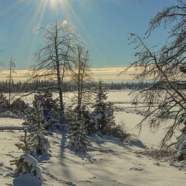 Tunkwa Lake is not far from Logan Lake B C