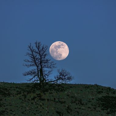 Moon on The Ridge