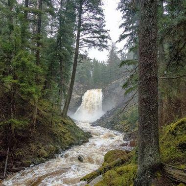 Quilchena Falls 2