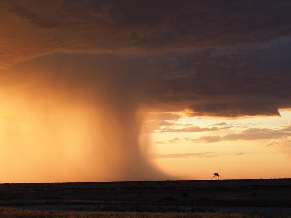 A downpour of rain on The Nullabor Plain