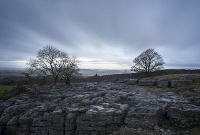 Farleton limestone Two Trees
