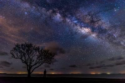 Under a star filled sky