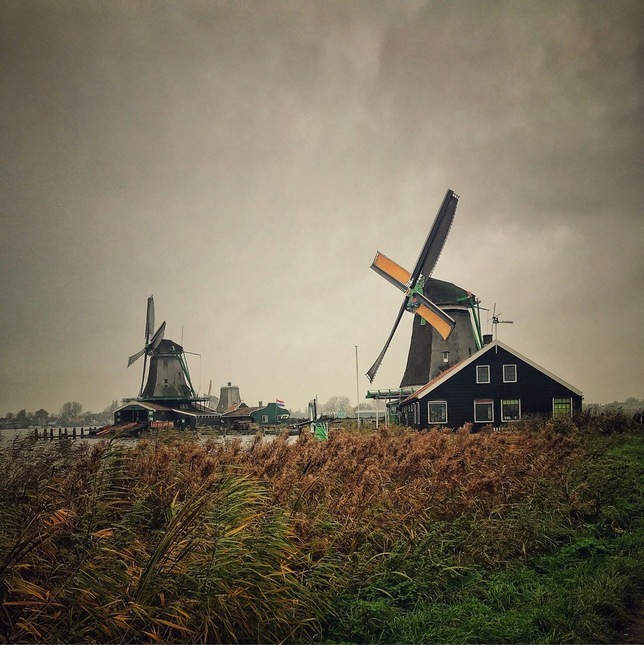 Zaandam windmill by jeisons11 - Windmills Photo Contest