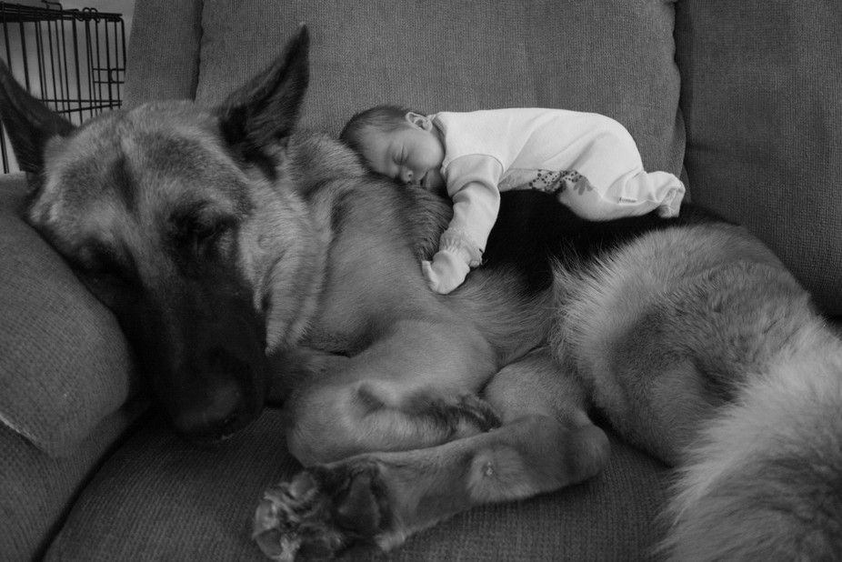 My daughter, Grace (around 2 months old when taken), and our dog, Maverick (age 1 1/2 when taken)...
