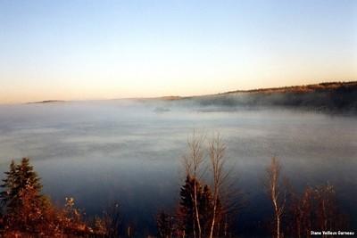 Brume sur le lac au petit matin, en forêt boréal