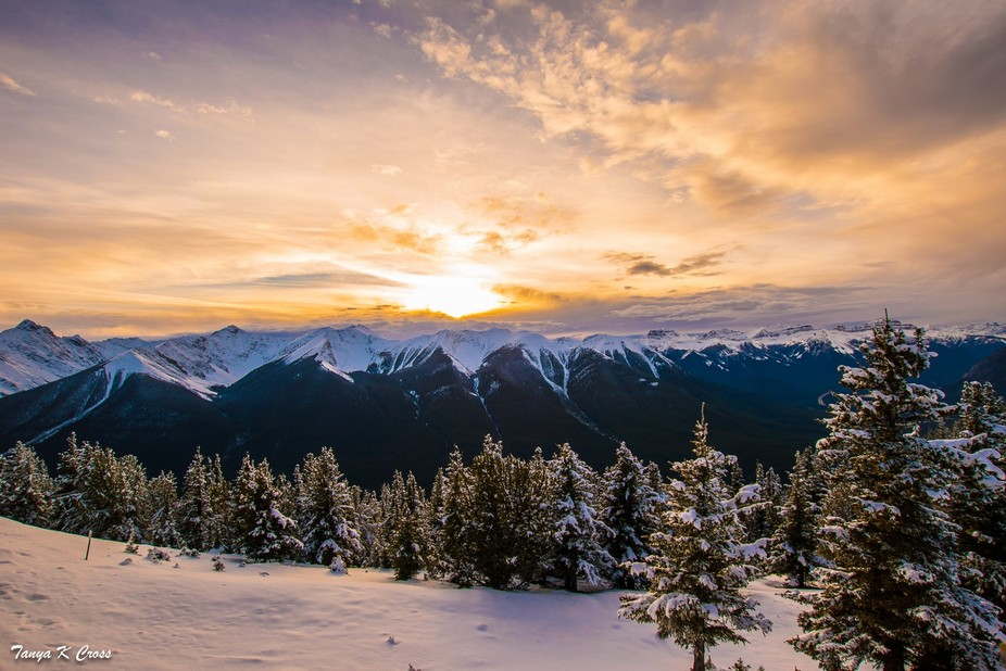 On top of Sulphur Mountain, capturing the golden moment of the sun's rays kissing the cl...