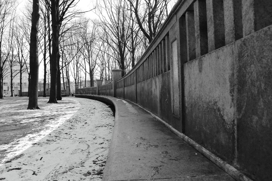 Tiergarten, Berlin. On a cold morning in Berlin whilst woundering around.