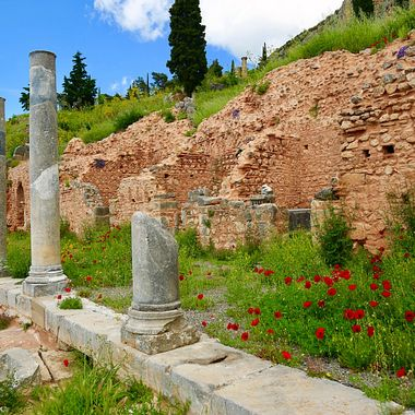 Delphi, Greece, flowers, ruins, temple, countryside, landscape