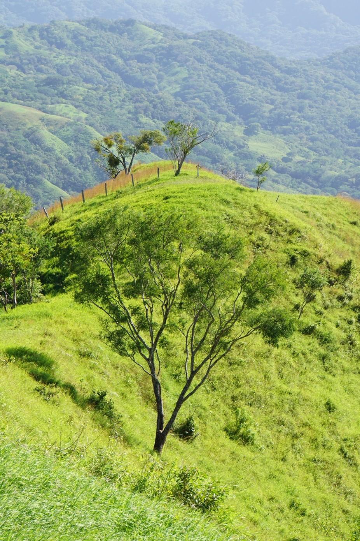 Beautiful hills of Coast Rica