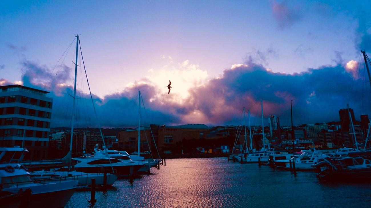 Chaffers Marina, dusk across the harbour