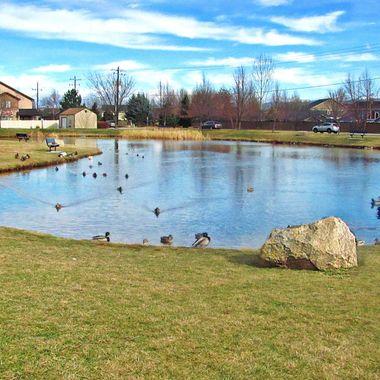 Settlers Park in Meridian.
