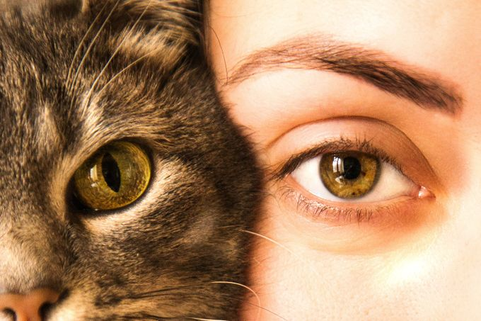 2 by Talmaza - Green Eyes Photo Contest
