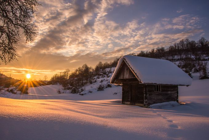 The magic of the winter evening by JoskoSimic - The Cold Winter Photo Contest