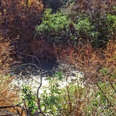 Gila River at Hayden