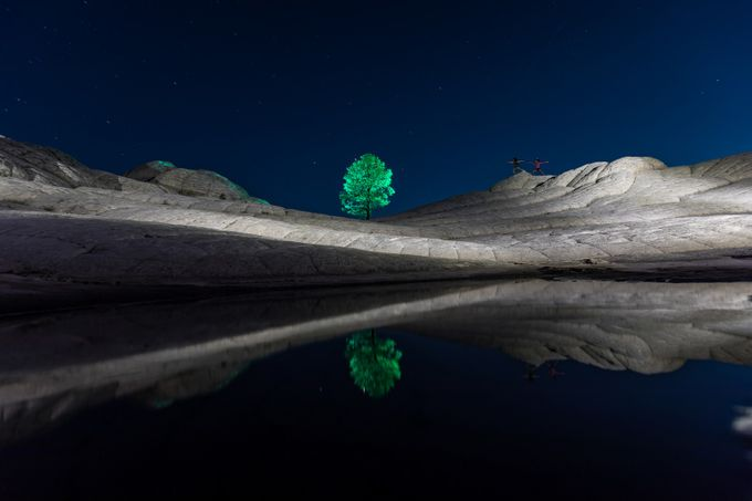 Lone Tree by gunnarheilmann - Lakes And Reflections Photo Contest