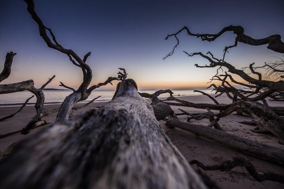 my perspective of sunrise at Boneyard beach at sunrise