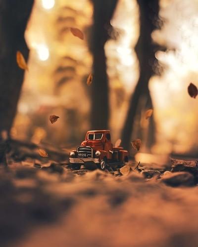 Autumn afternoon!