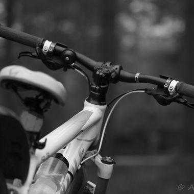Bike  B&W