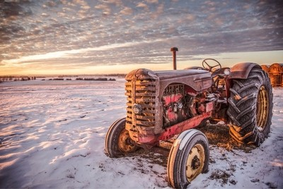 Winter Massey