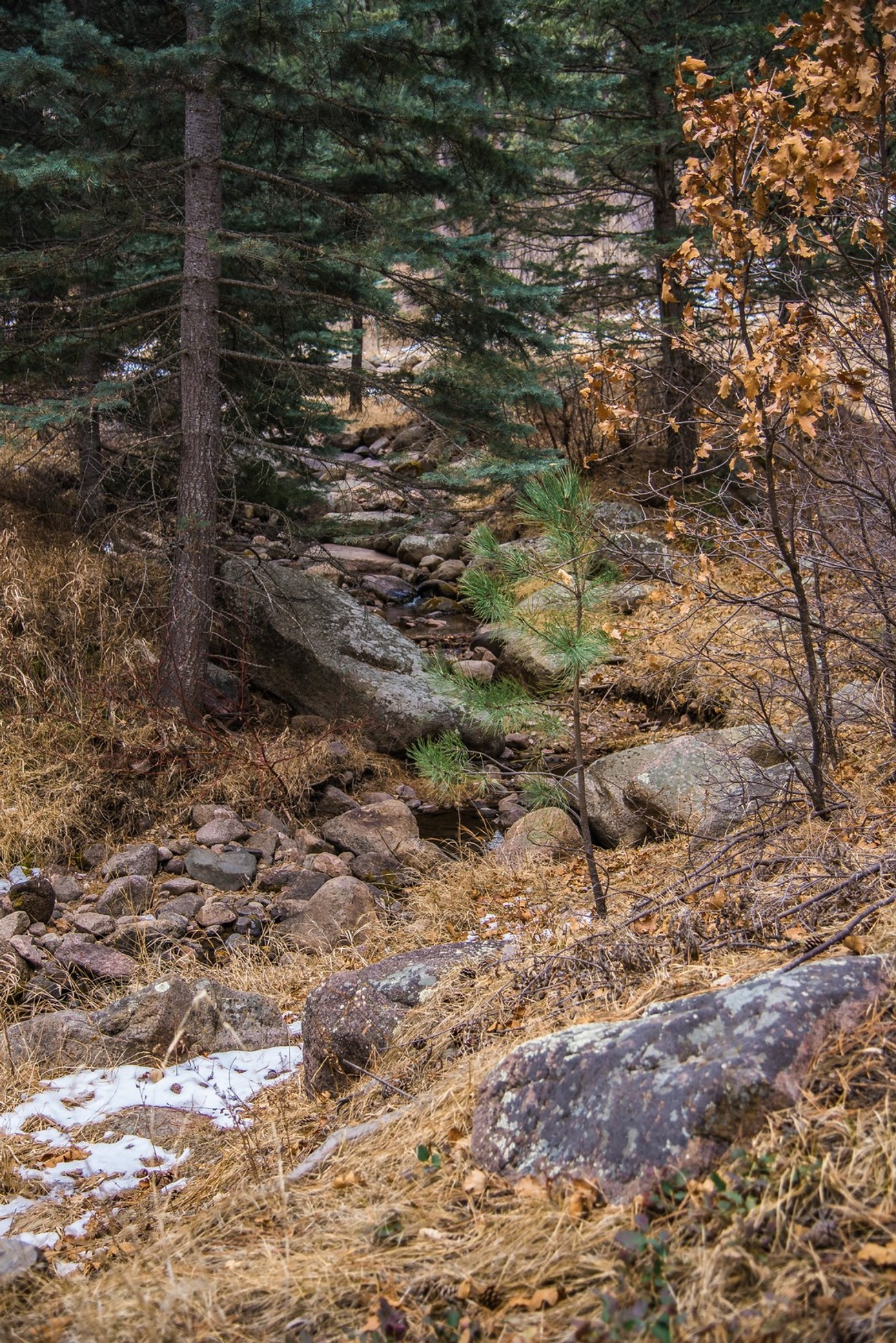 Creek Source 3