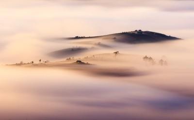 Fog in Dasar