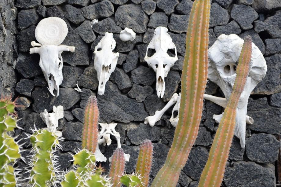 wall of skulls.....