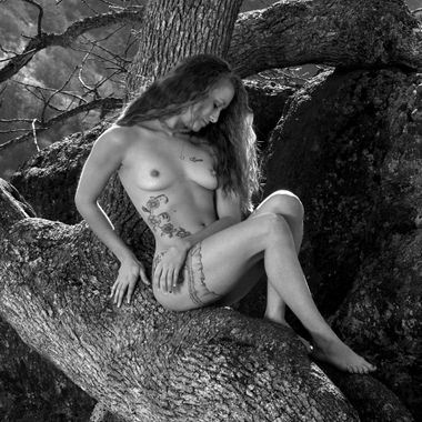 Jenelle Sits in the Curvy Tree