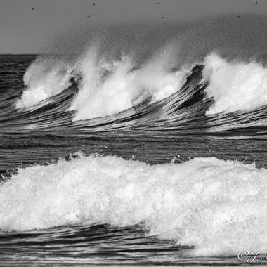 Powerful Surf BW