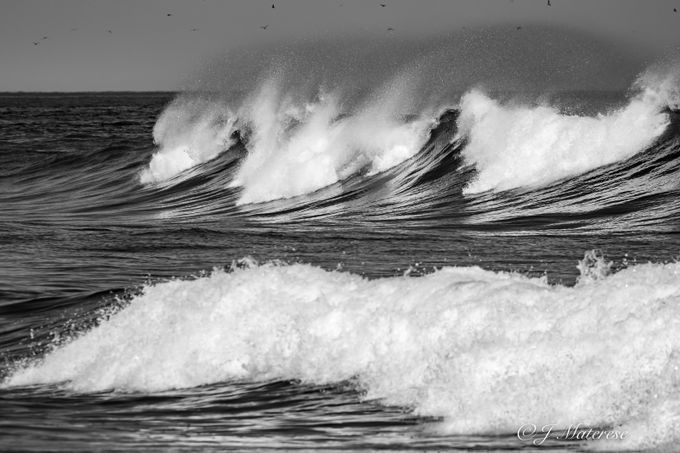 Powerful Surf BW