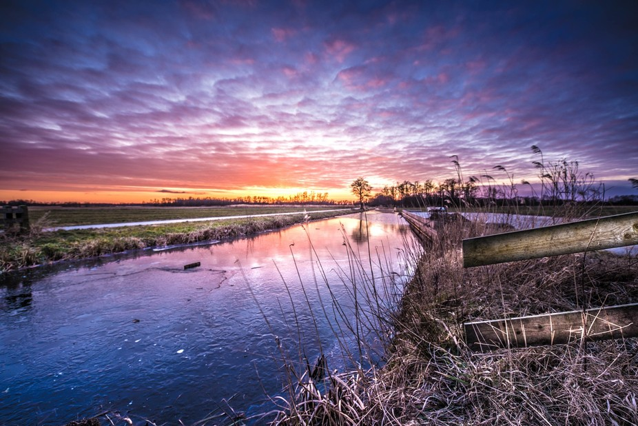Sunset in nature reserve near Wanneperveen, Overijssel, Netherlands