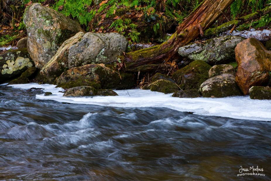 Flowing Streams on an icy day