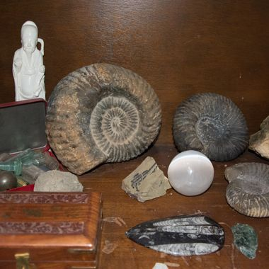 These large ammonites are from the Merritt B C area. They are over 100 million years old and from the Jurassic era of time.