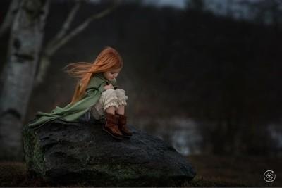 Ginger in winter