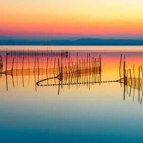 La Albufera Nature Park is a wonderful escape from the bustling city of Valencia and a great place to soak up some beautiful landscapes and be at...