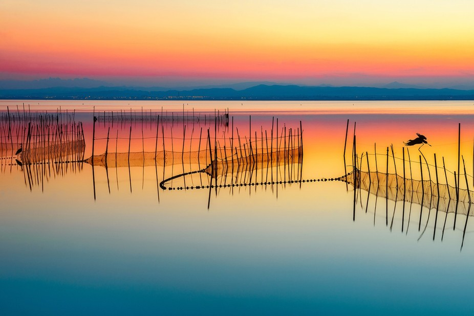 La Albufera Nature Park is a wonderful escape from the bustling city of Valencia and a great plac...