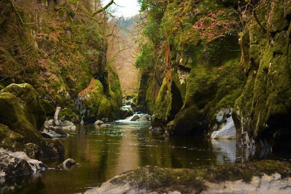 green, water, nature, fairyglen
