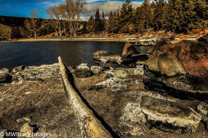 Lake firewood