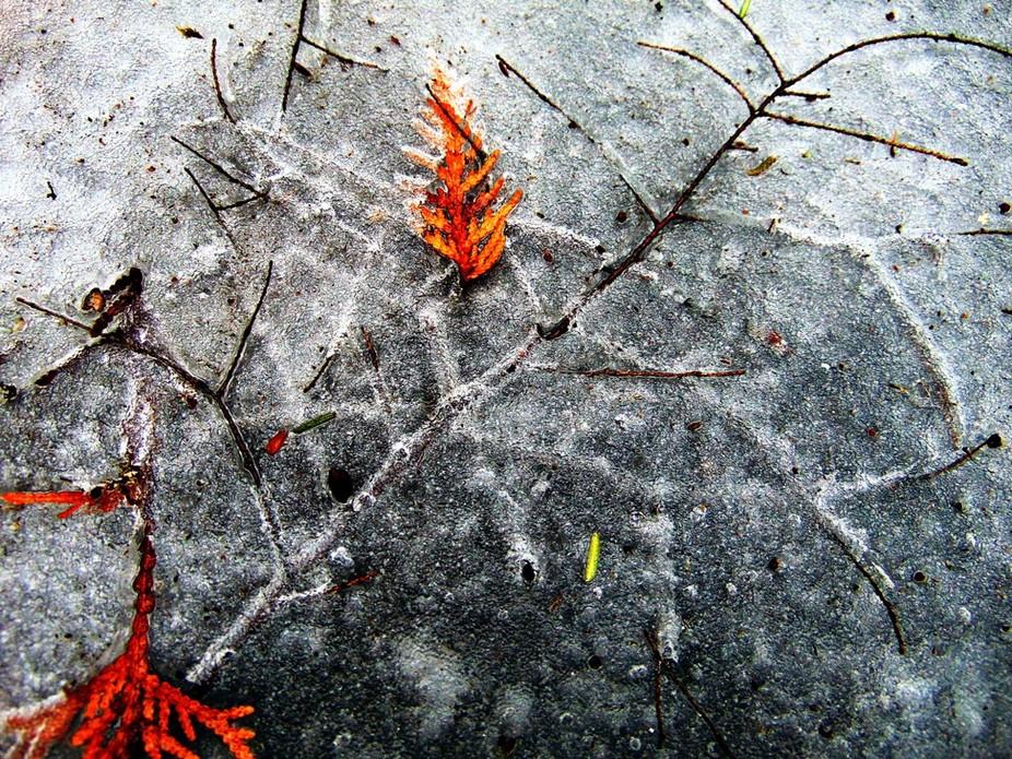 Ice Imprint