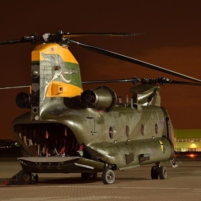 This Chinook looks hungry!