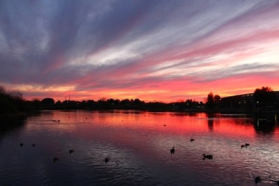 Duck Pond at Days End