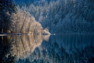 Padden Winter