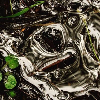 @photoarcade_contest  Water reflection.  #arcadeofwater #trailsend #wander #wetlands #water #reflection #outthebackdoor #backyardnature #canon_photos #canonwhatelse #canonglobal #gurushots #photocrowd #got__greatshots #marvelouz_world #ethereal_moods #ig_