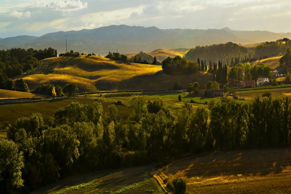 Golden hills of August.