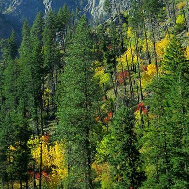 Cascade Mountains Fall landscape