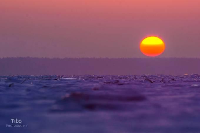 Purple Sunrise by Celtic - Shades Of Purple Project