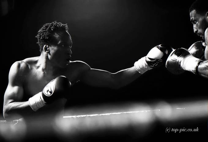 Fight Night by top-pic - Gloves Photo Contest
