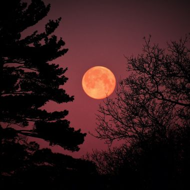 Sun lit up the setting moon along the Rainy River Nikon D3400 supervivid