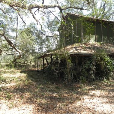 This is in the woods in Effingham Co, Ga