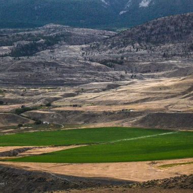 A field not far out of Ashcroft British Columbia and a part of the Basque ranch