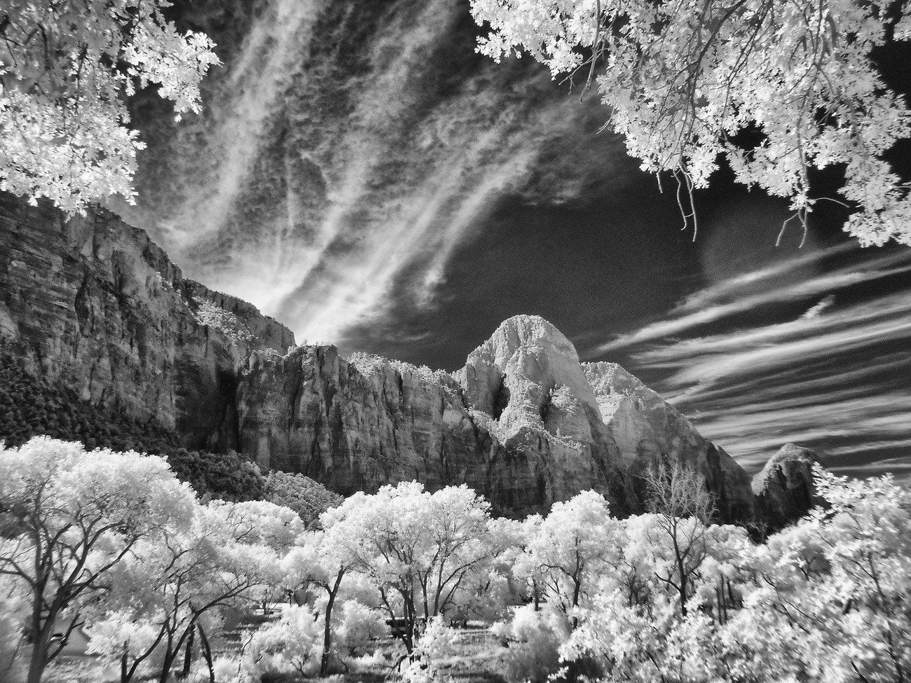 Taken with converted infrared Nikon L28 point and shoot.